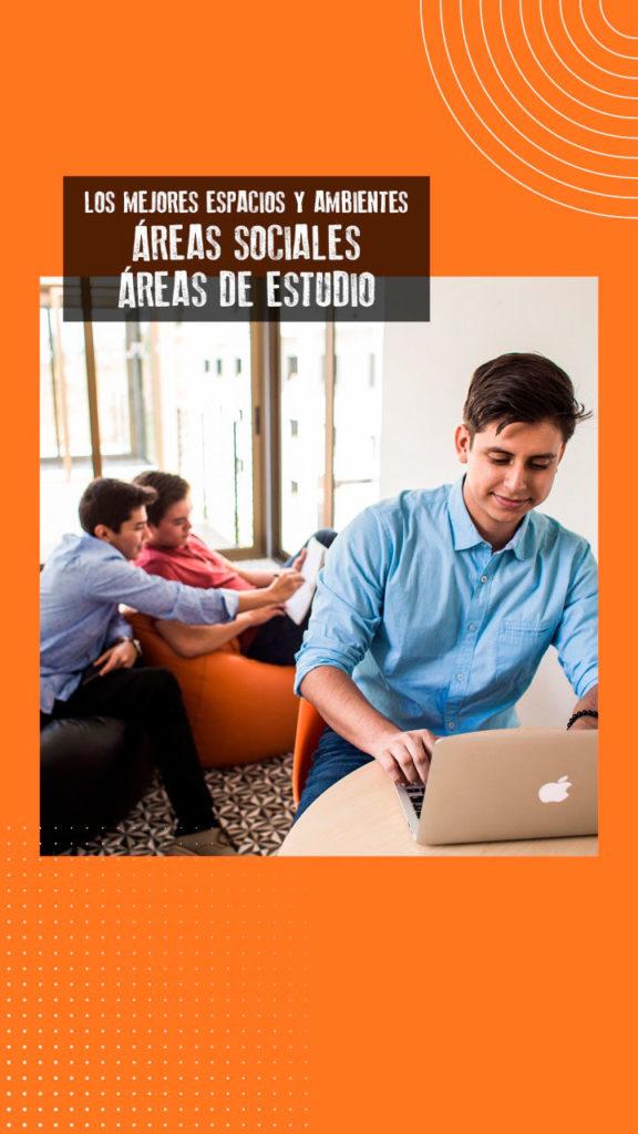 Areas-estudio-D15