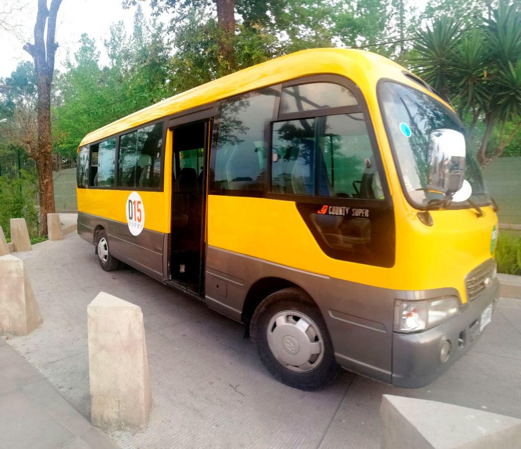 Bus-Transporte-D15