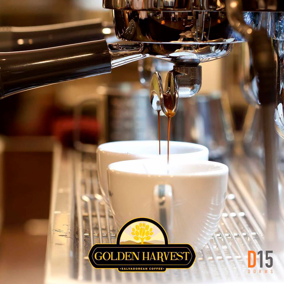 Golden-Harverst-D15-Dorms